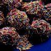 Çikolatalı Şekerlemeli Toplar